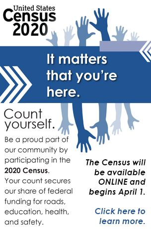 Census April 2020 graphic